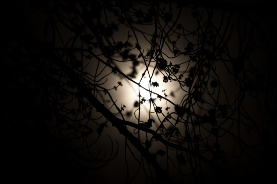 Vollmond 20140316